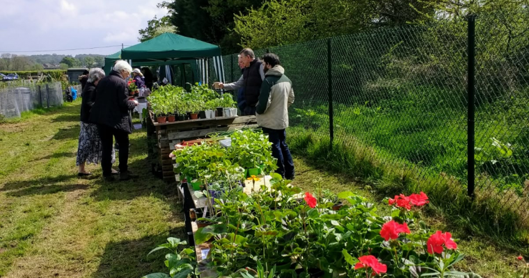 SPAA Open Day 2019 shows the allotments bursting with fruit & veg